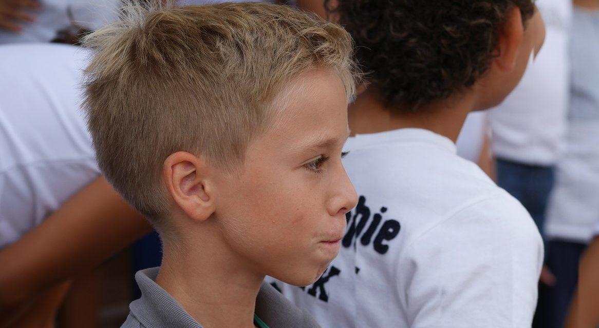 Schulische Situation autistischer Kinder in Baden-Württemberg, Umfrage Juli 2020